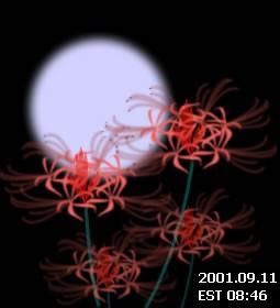 被害者に捧げる一本の花。